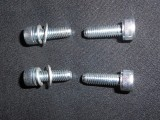 CARBURETTOR BOWL & CAP SCREW SET